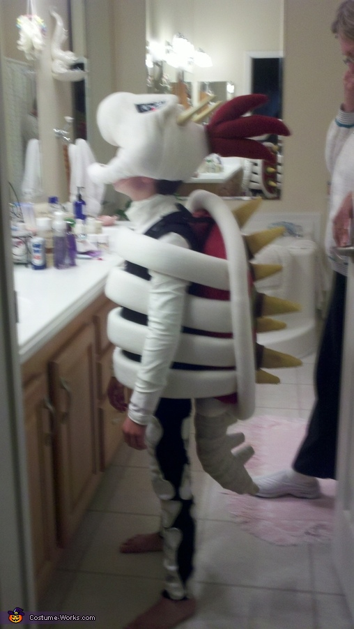 Dry Bowser From the Side, Dry Bowser Costume