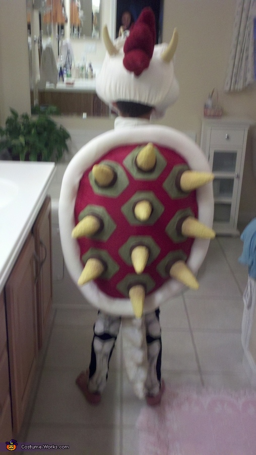 Dry Bowser from the Back, Dry Bowser Costume
