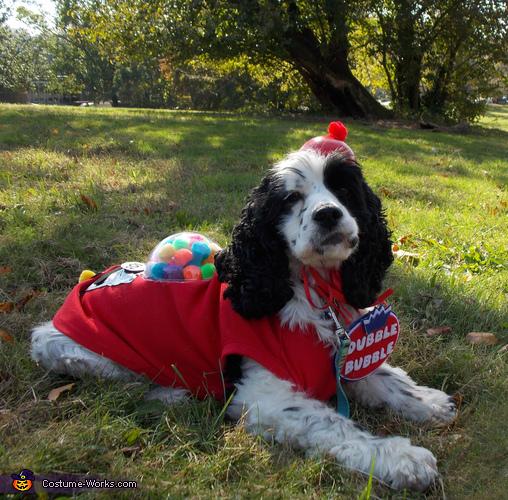 Dubble Dog Dubble Bubble Gumball Machines Homemade Costume