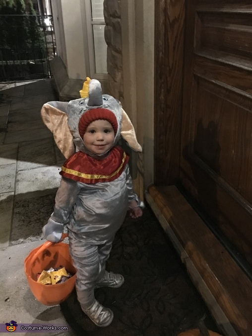 Miss dumbo waiting for her candy, Dumbo Costume