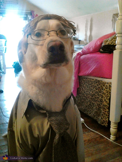 Dwight K. Schrute Dog Costume