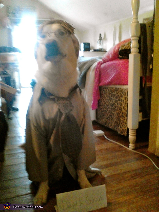 Homemade Dwight Schrute Dog Costume