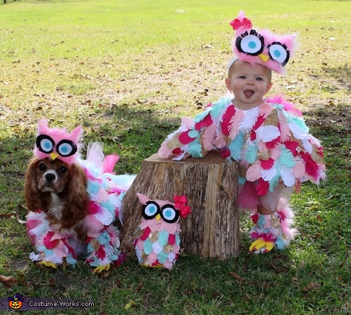 Edie the Owl Costume