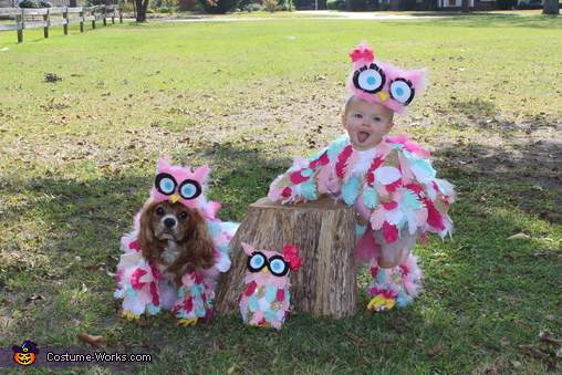 Edie and Lolli, Edie the Owl Costume