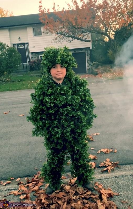 Edward Scissorhands, Bush and Hairdo Homemade Costume