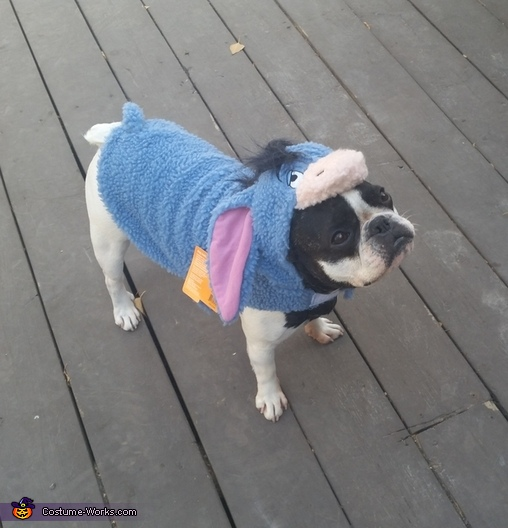 Eeyore Homemade Costume