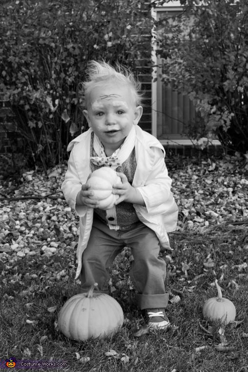 Crazy koot is stealing pumpkins!, Einstein Costume