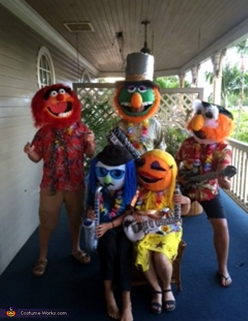 Electric Mayhem Band Hawaiian Tour 2015 Costume