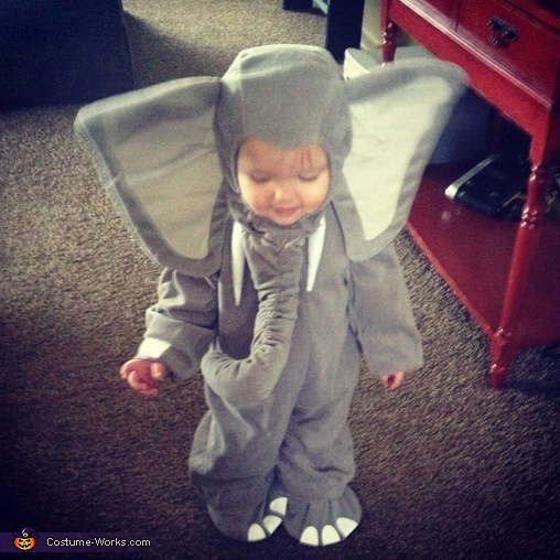 Adorable, Elephant Baby Costume