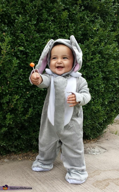 The Elephant Costume