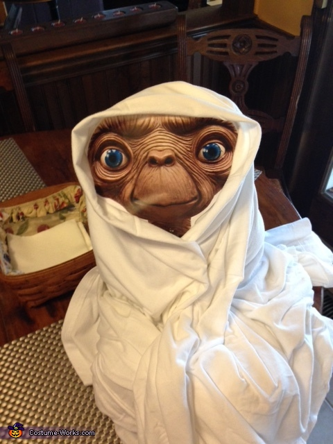 Elliott E.T. Homemade Costume