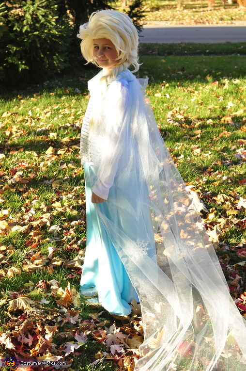 Elsa, Elsa and Anna Costume