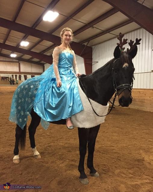 Elsa and Sven Costume