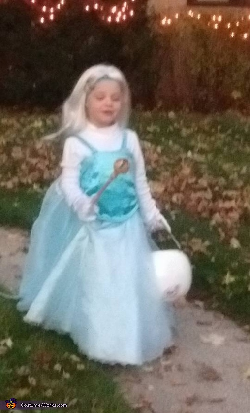 Elsa - Frozen Homemade Costume