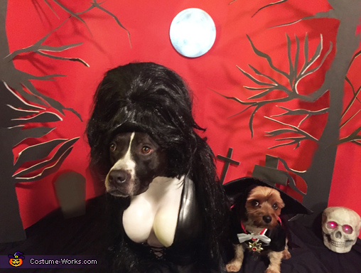 Elvira, Mistress of the Bark & Count Pupula Costume