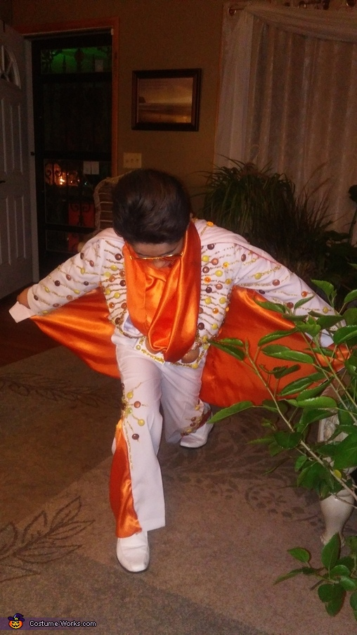 Elvis Homemade Costume