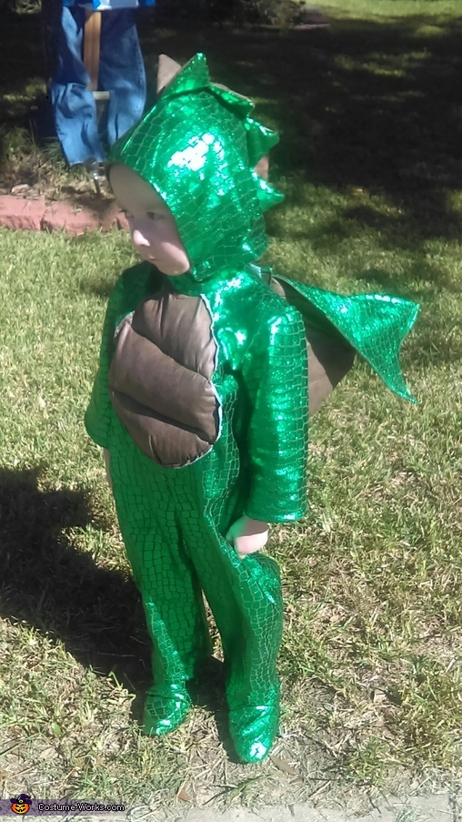 Dragon boy three, Enchanted Fairy Costume