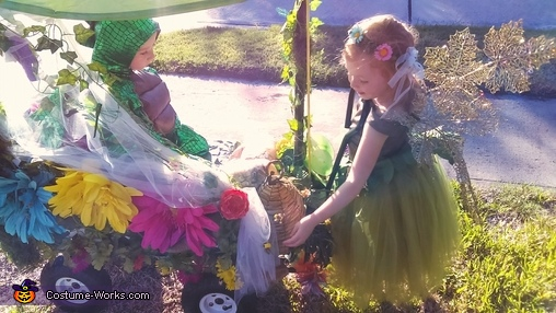 Enchanted wagon, Enchanted Fairy Costume