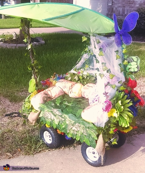 Wagon two, Enchanted Fairy Costume