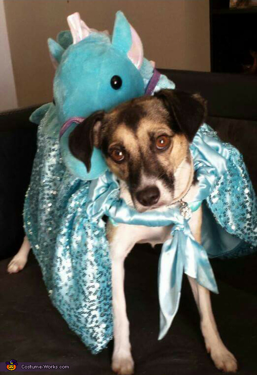 Enchanted Seahorse Dog's Costume