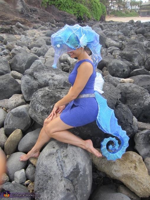 Seahorse Costume