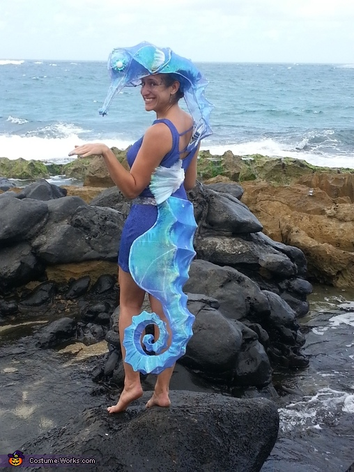 At the beach on a windy, Hawai'ian Halloween day, Seahorse Costume