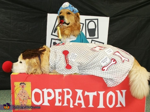 Evil Surgeon and Patient - Homemade costumes for pets