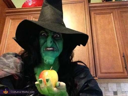 Evil Witch Costume