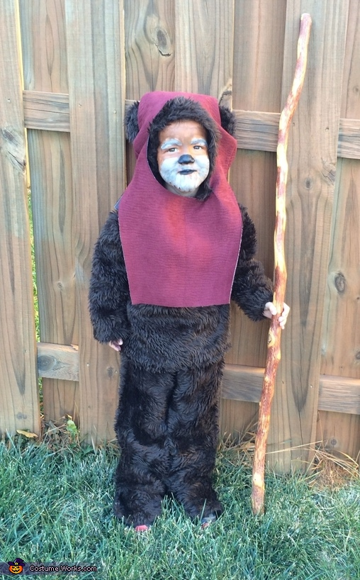 Ewok Costume  sc 1 st  Costume Works & Homemade Ewok Costume for Boys