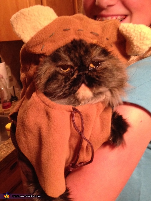 Ewok from Endor Cat Costume