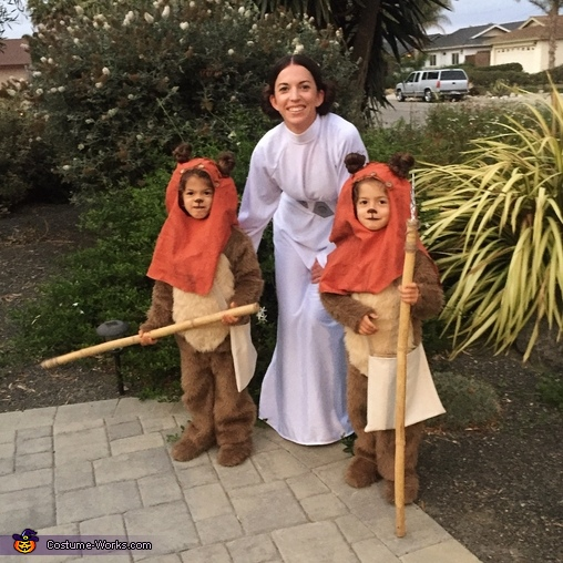Ewoks and Princess Leia, Ewoks and Princess Leia Costume