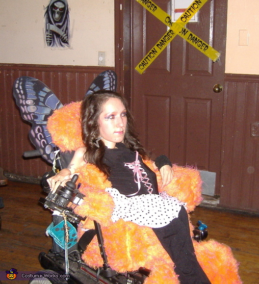Fairy On Wheels Costume