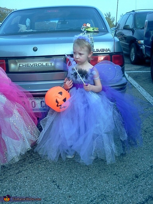 Katelynn, Fairy Princess Costumes