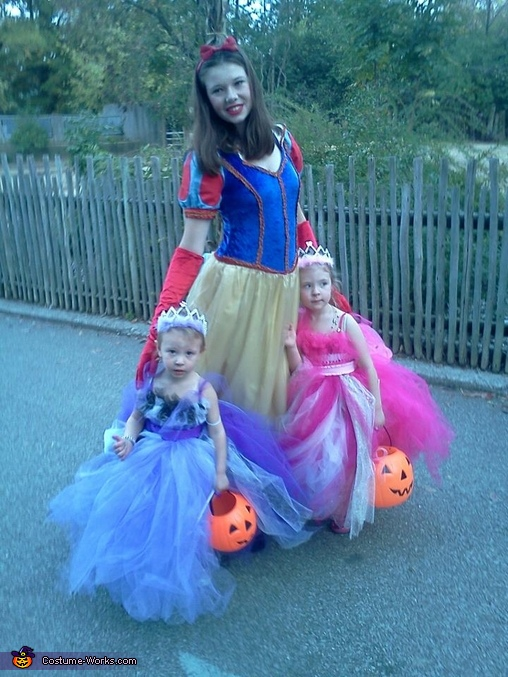 One more look at both, ignore snow white :), Fairy Princess Costumes