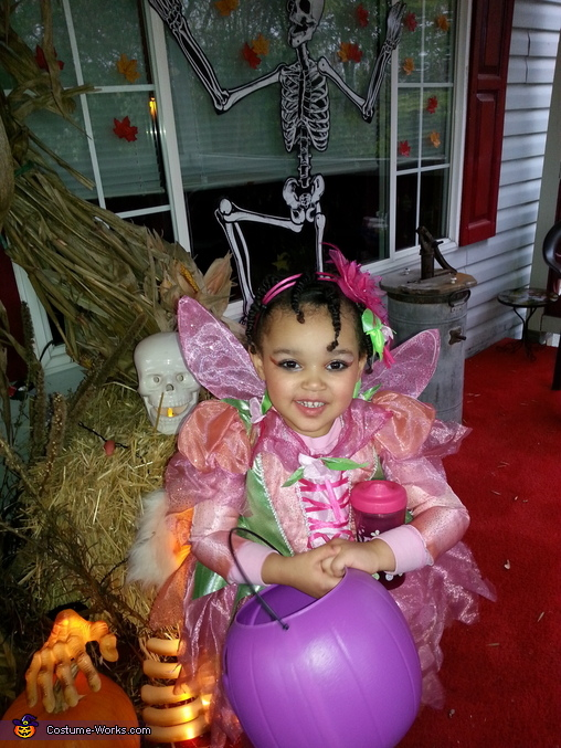 Fairy Princess Lilly Costume