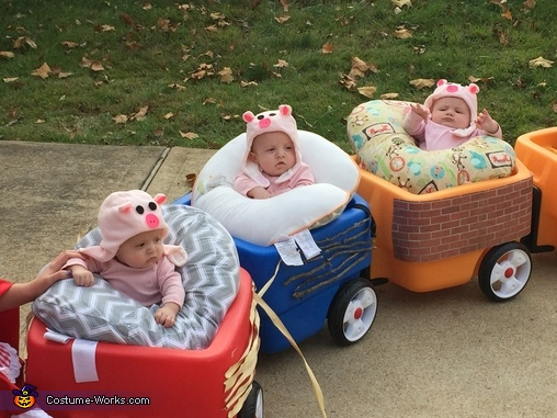 The Piggys in their houses, Fairy Tale Family Costume