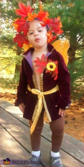 Fairy King - Homemade costumes for kids