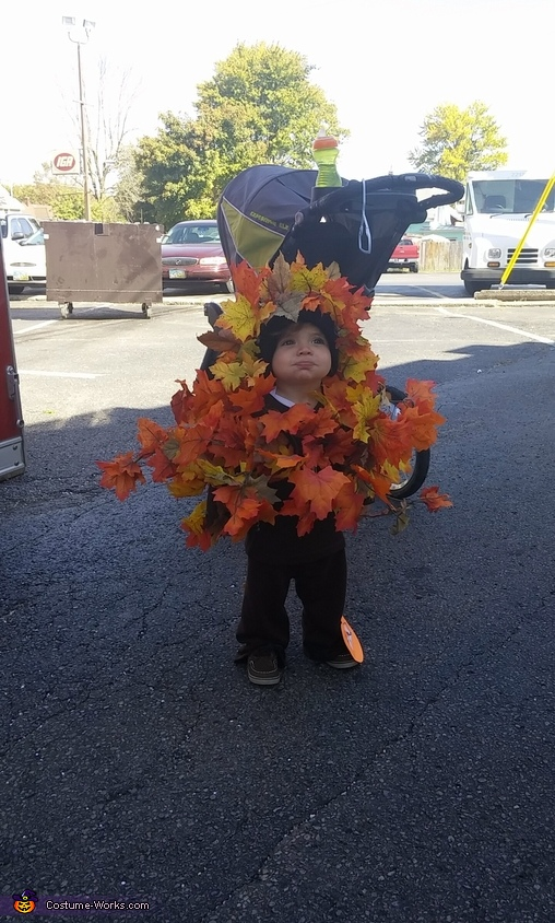 Fall Tree Baby Homemade Costume