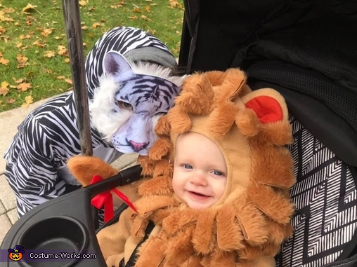 Don't let the sweet smiles fool ya, he's ferocious, Family Zoo Costume