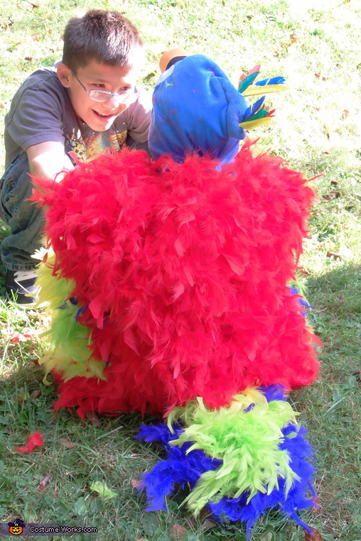 The back of the parrot costume, Feathery Fluffy Parrot Baby Costume