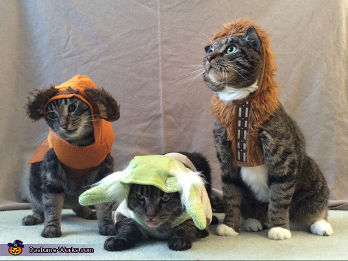 Feline Force of the Galaxy Costume