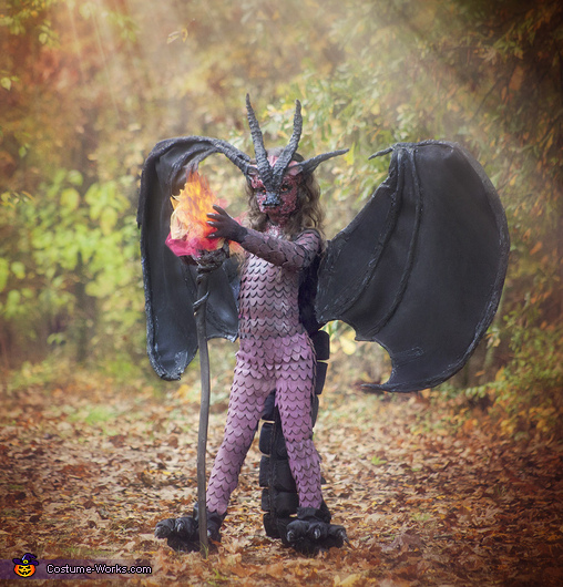 Fierce fiery Dragon Costume