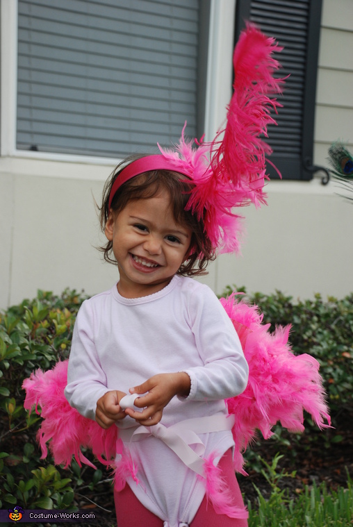 Flamingo, Peacock and Flamingo Costume