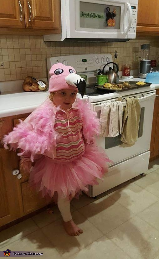 Flamingo, Flamingo Costume