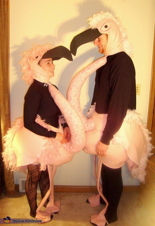 Flamingo Costumes