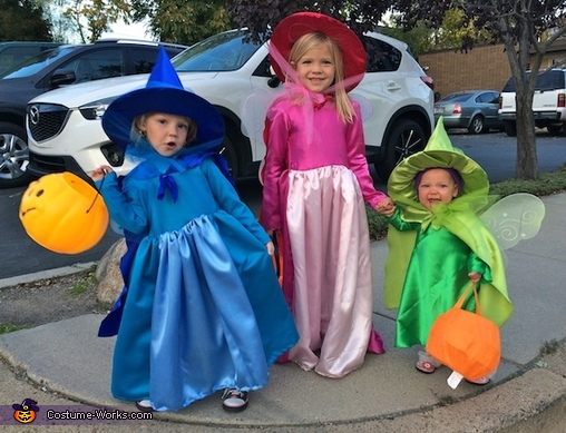 Three Good Fairies: Flora, Fauna and Merryweather Costume