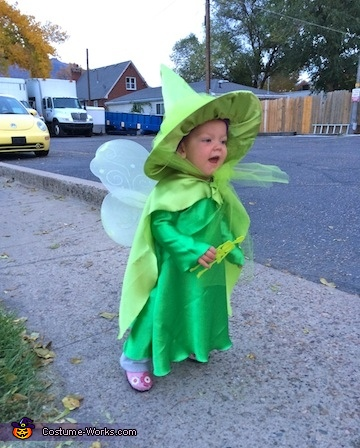 Three Good Fairies Costume
