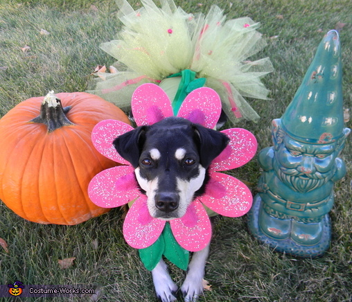 Flower Puppy Costume