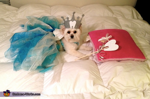 Fluffiest Tooth Fairy Costume