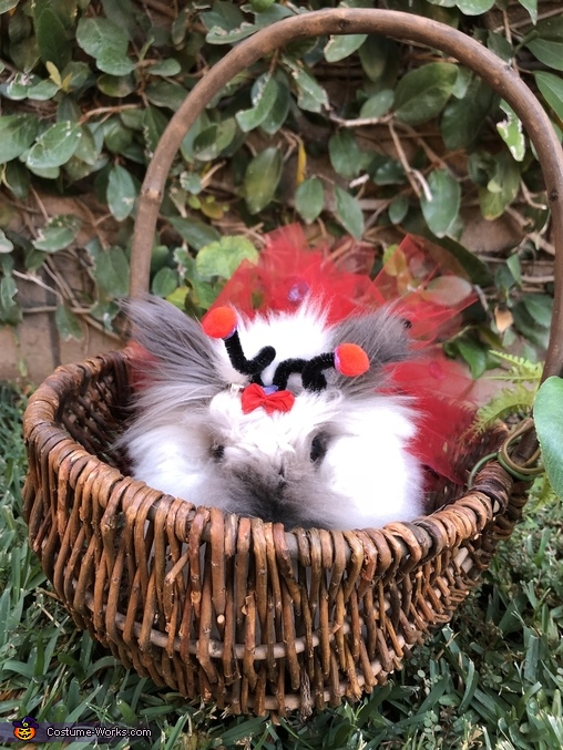Fluffy Ladybug Homemade Costume